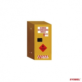 Safety Cabinet|Flammable Cabinet(60L)