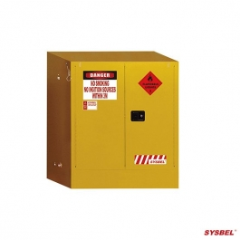 Safety Cabinet|Flammable Cabinet(160L)