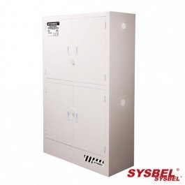 Corrosive Substance Storage Cabinets -ACP810048